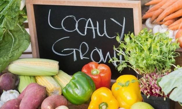 The Organic Lifestyle