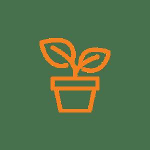 Garten - Pflanzen