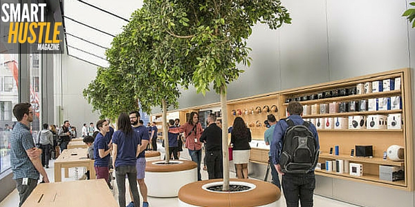 The Importance of Design in Business Learning from Apple Stores
