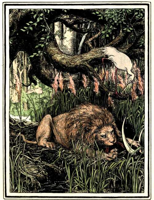 The Lion and the Crane – Indian Fairy Tales
