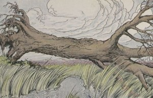 Read more about the article THE OAK AND THE REEDS – Aesop Fables for Kids