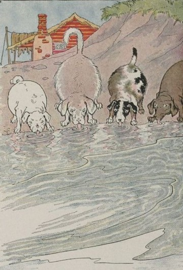 THE DOGS AND THE HIDES – Aesop Fables for Kids