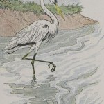 THE HERON – Aesop Fables for Kids