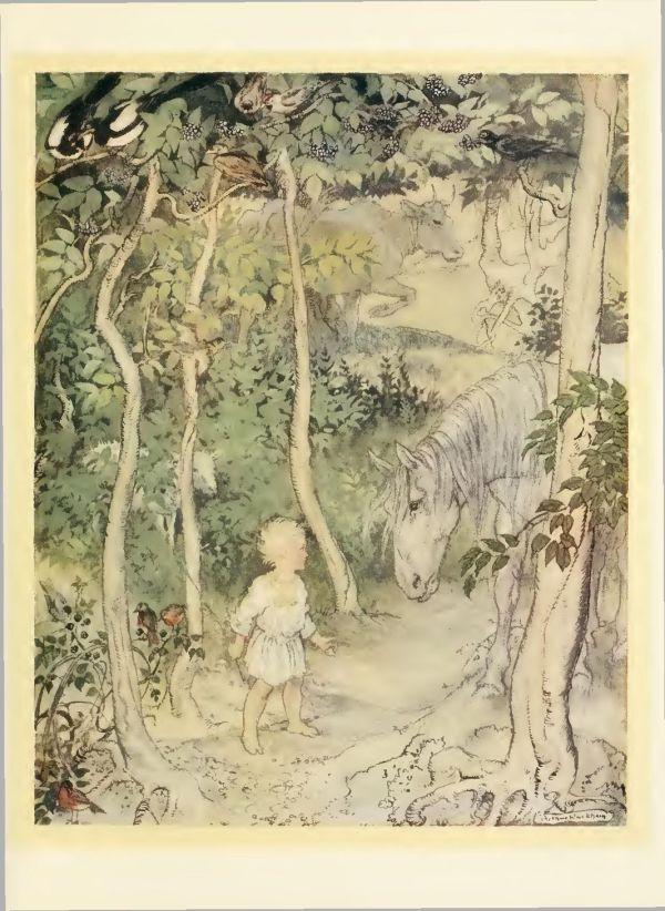 Irish-Fairy-Tales-by-James-Stephens-06