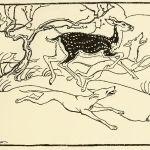 OISIN'S MOTHER – James Stephens – Irish Fairy Tales