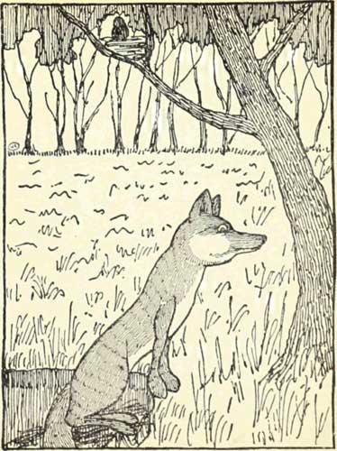 THE-FOX-AND-THE-BLACKBIRD-08