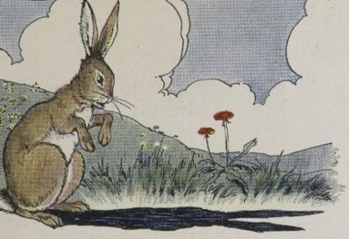 THE HARE AND HIS EARS - Aesop Fables for Kids