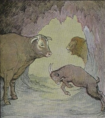 THE BULL AND THE GOAT – Aesop Fables for Kids