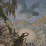THE EAGLE AND THE BEETLE – Aesop Fables for Kids