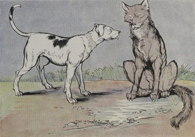THE WOLF AND THE HOUSE DOG - Aesop Fables for Kids