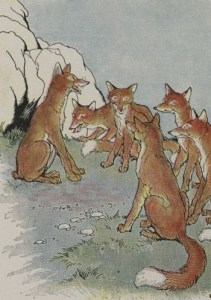 Read more about the article THE FOX WITHOUT A TAIL – Aesop Fables for Kids