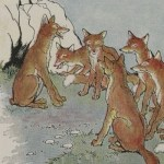 THE FOX WITHOUT A TAIL – Aesop Fables for Kids