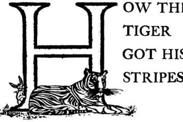 04 How the Tiger Got His Stripes