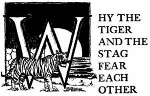 Why the Tiger and the Stag Fear Each Other – Brazilian Fairy Tales