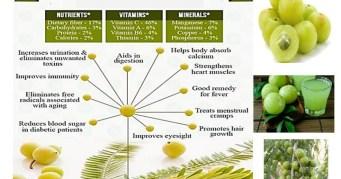 Health Benefits of Gooseberry