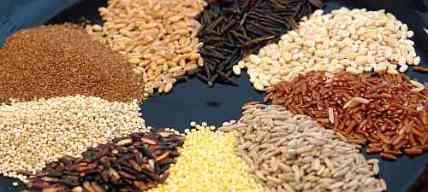 whole-grains-wide
