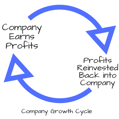 Company Profit Growth Cycle