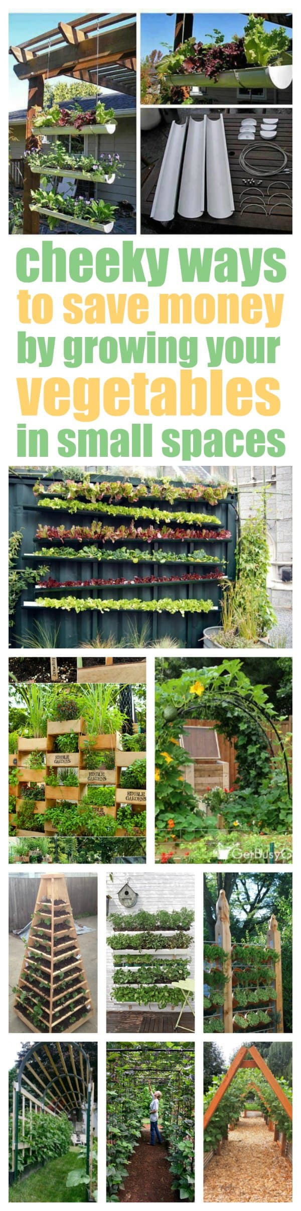 Vertical Vegetable Garden Ideas That Will Solve Your Space Problems