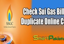 Sui Gas Duplicate Bill