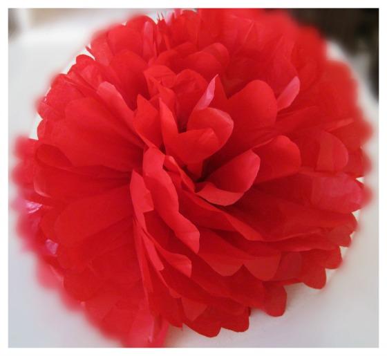 Red tissue paper pom pom
