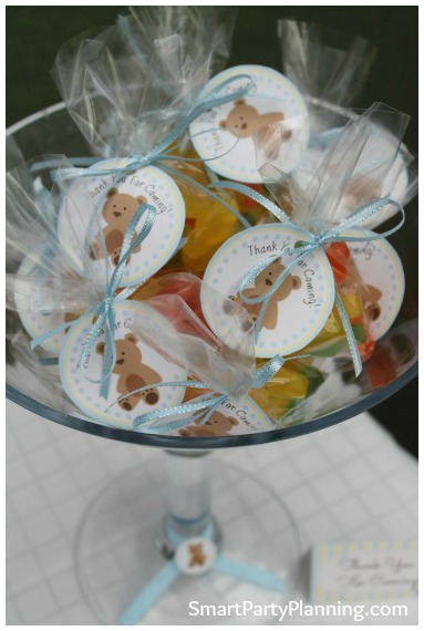 Teddy Bear Baby Shower Party Favors