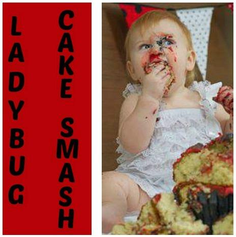 Lady Bug Cake Smash