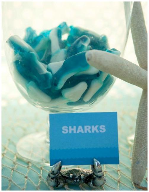 Shark lollies
