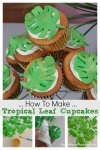 How to make tropical leaf cupcakes