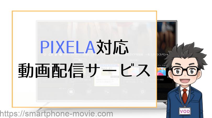 PIXELA対応 動画配信サービス
