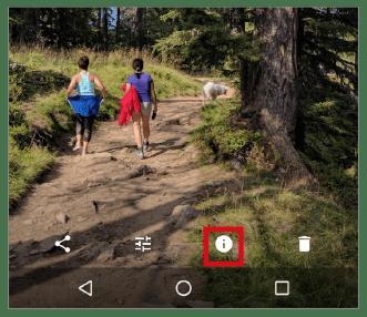 Google Foto-Tipp: Fotos mit einem Label versehen