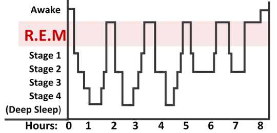 rem sleep cycle graph