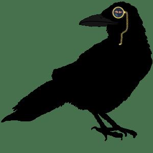 Smart Raven Logo (klein)