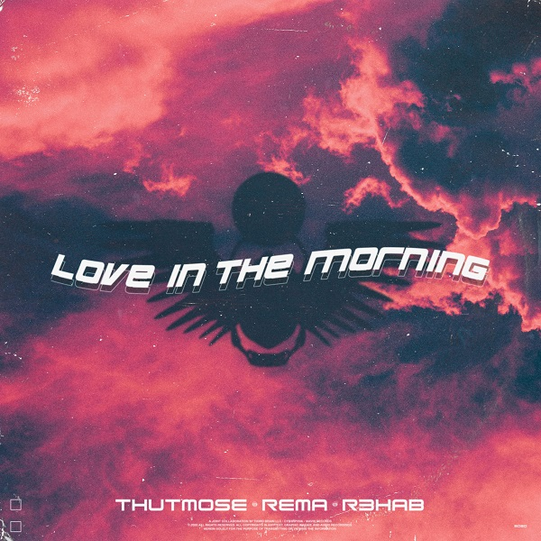 Thutmose ft. Rema, R3hab – Love In The Morning (Remix)