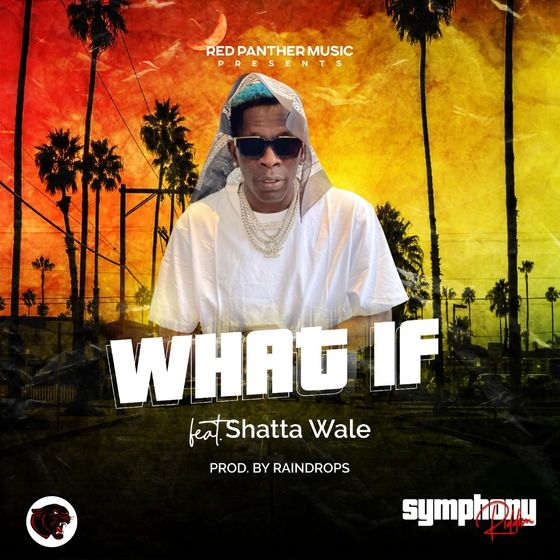 Shatta Wale – What If
