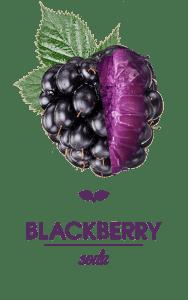 FT_Blackberry