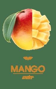 FT_Mango