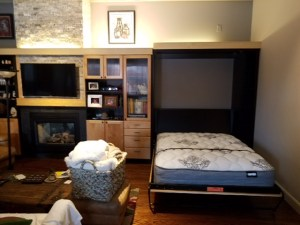 Contemporary Modern Style Murphy Bed, Living Room, Twin bed, Open, Custom Cabinets