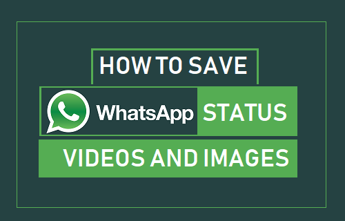 save-whatsapp-status-videos-and-images