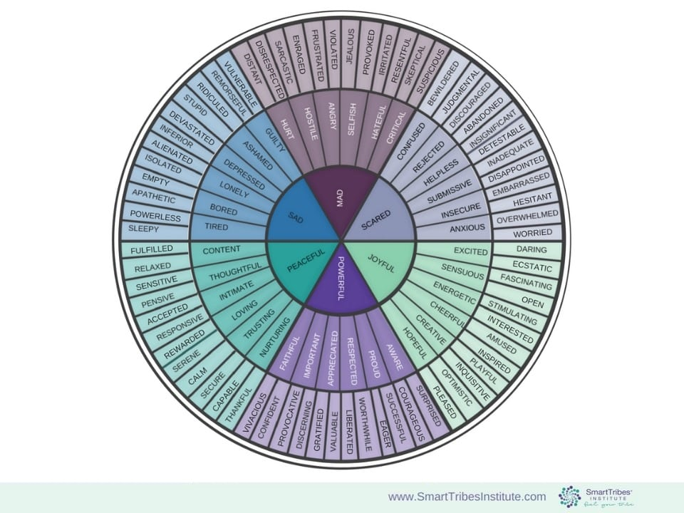 Neuroscience Emotion Wheel