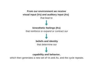 VAK Anchoring Neuroscience Tool