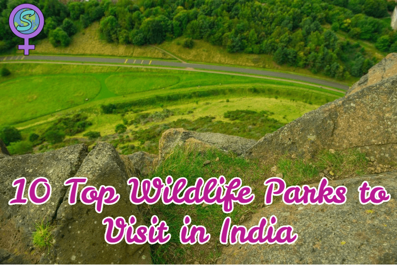10 Top Wildlife Parks To Visit In India
