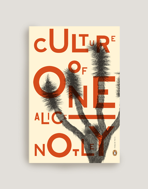 Culture of One (Rejected cover)