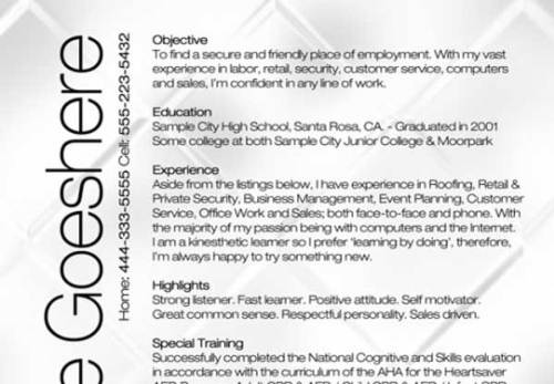 vip bottle service resume