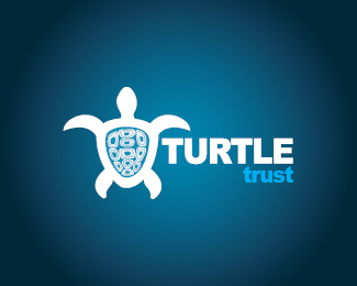 turtle logo design inspiration 04 25 Turtle Logo Design Inspiration