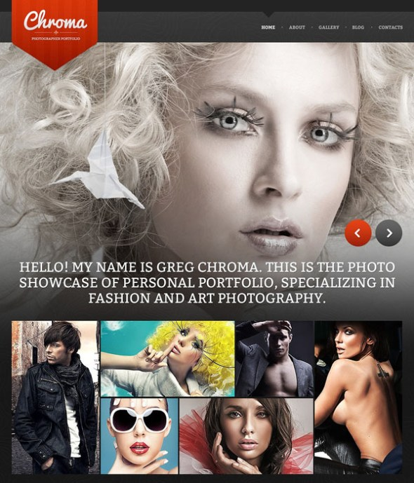 photography-drupal-theme-10