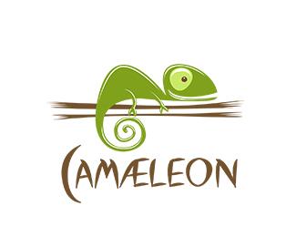 chameleon-logo-12