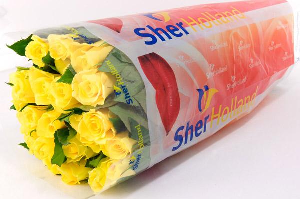 Flower Packaging 09