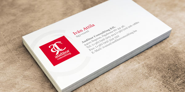 Accountant Business Card 10