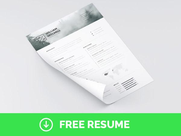Free Minimal Resume Template 11