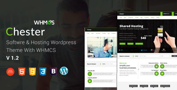 Hosting WordPress Theme WHMCS 20